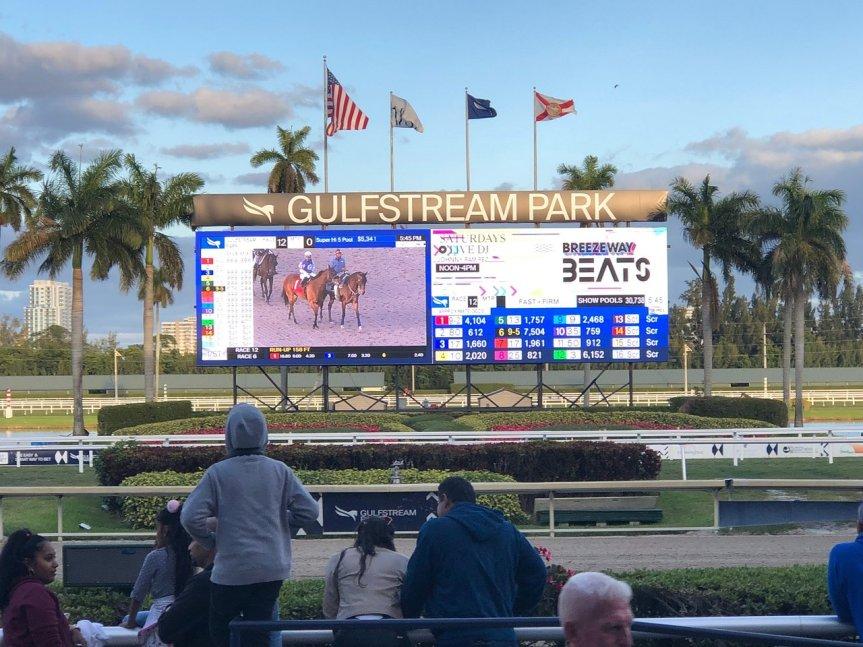 Ippica, Scommesse: Gulfstream Park inserito nel palinsesto di sabato in Italia! Vedremo il Florida Derby e nonsolo