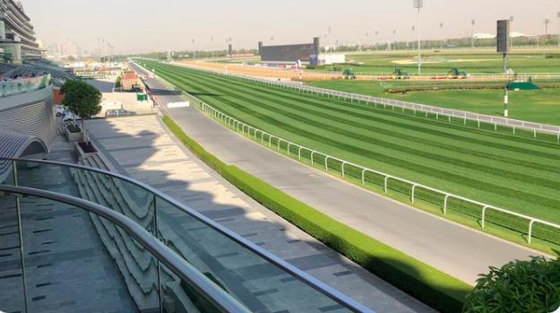 Ippica, Dubai: Meydan annuncia la notte della Dubai World Cup a portechiuse