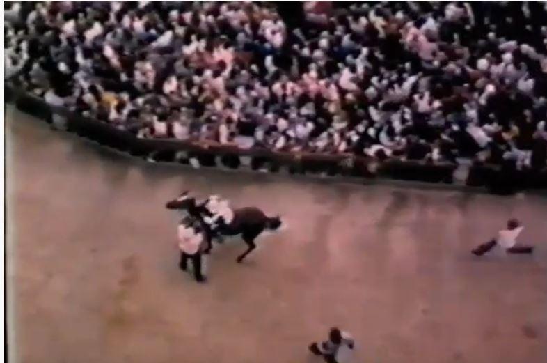 Palio di Siena: Palio 16 agosto1972