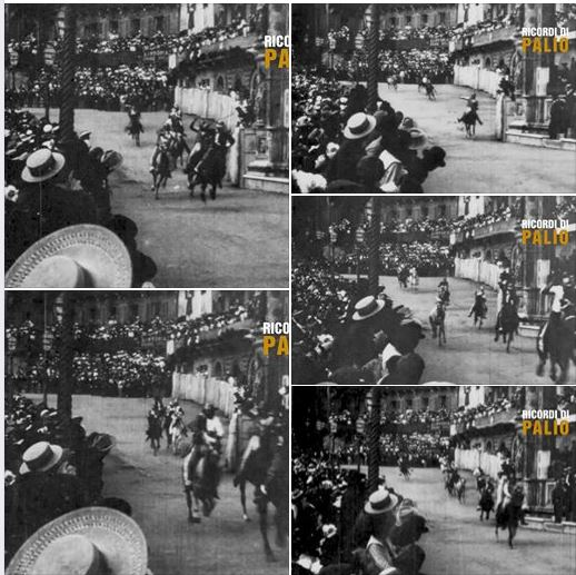 Palio di Siena, Ricordi di Palio: Palio 16/08/ 1902 TARTUCA con Domenico Fradiacono detto SCANSINO su Baio stella infronte