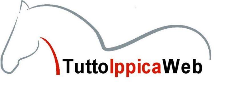 Ippica e Corse in Provincia: Dal 1 settembre tutte le corse degli ANGLO ARABI e dal 1 gennaio 2020 anche laprovincia