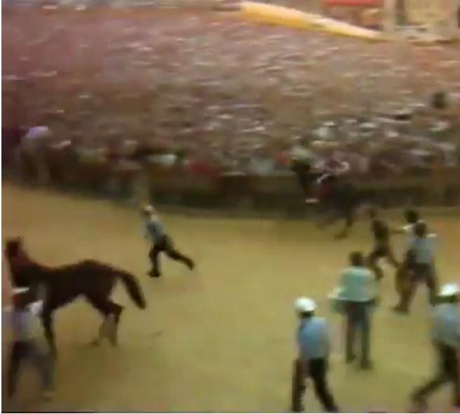 Palio di Siena: Palio 16 agosto1987