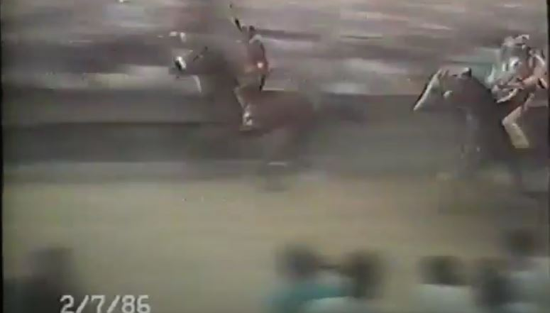 Palio di Siena: Palio 2 Luglio1986