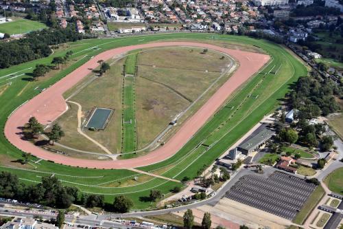 Ippica, Oggi alle corse, 23 Maggio: Bordeaux Le Bouscat, Gävle e Gulfstream Park. I PDFscaricabili