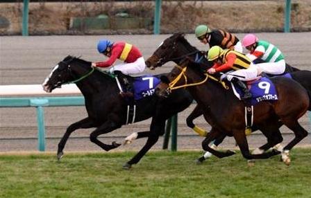 Ippica, Giappone: Contrail, assolo nel Derby giapponese. Impressionante all'epilogo, Europa inagenda