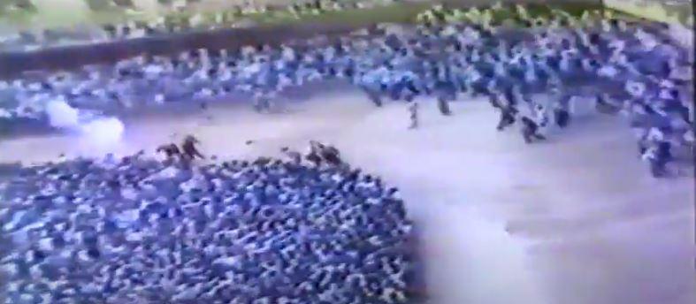 Palio di Siena: Palio 3 luglio1978