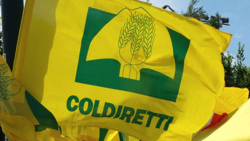Siena: Coldiretti Siena, di scena il confronto tra i candidati alleregionali