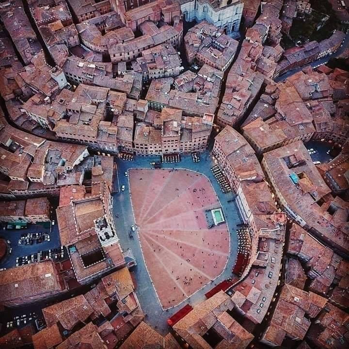 Siena: Il Comune lancia il centro commerciale naturale del centro storico diSiena