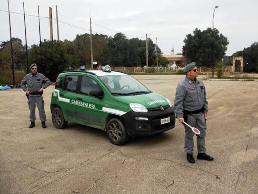 Siena: Inchiesta bis cavalli scambiati, incidente probatorio sui resti di due cavalli trovati aValiano