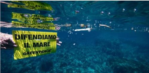 Toscana: Al Santuario dei Cetacei i pesci mangianoplastica