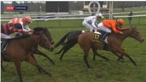 Ippica, Francia: Debutto con vittoria per Zaykava, uno degli ultimi prodotti della campionessa Zarkava. Ecco ilvide