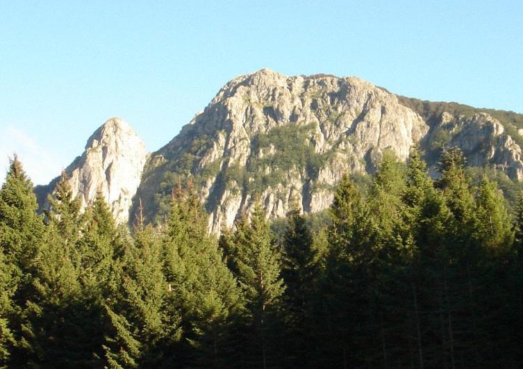 Toscana: Escursionista muore alla Verna davanti allamoglie