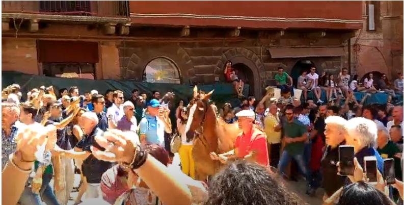 Palio di Siena: Tratta giugno 2018 – Porto Alabeall'oca
