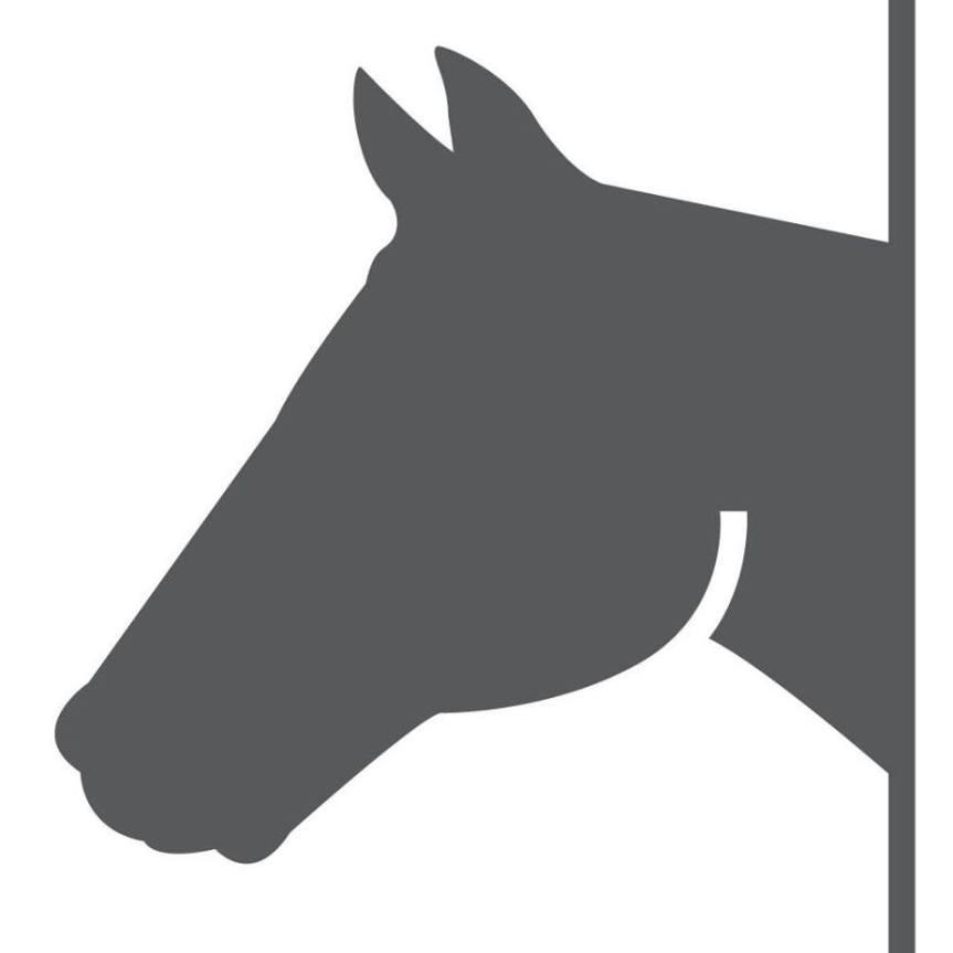 Ippica, Tragedia in mare: Quattro cavalli morti nel viaggio versoChilivani!