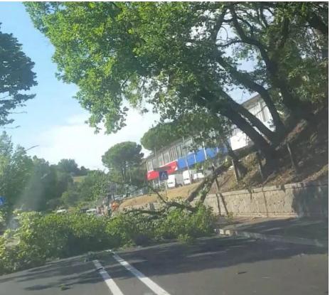 Siena e Provincia: Nubifragio, Siena e Valdelsa spazzate dalmaltempo