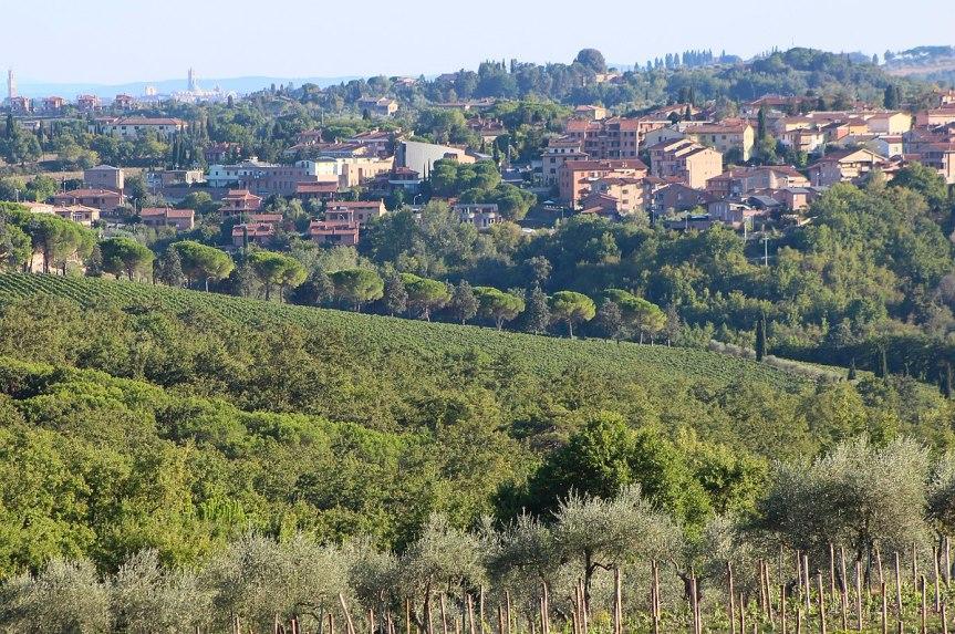 Provincia di Siena, Consiglio di zona Quercegrossa-La Ripa: La presidente è LuciaFabbri