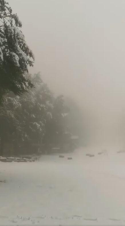 Provincia di Siena: La scorsa notte ( 25/09 ) sono caduti 15 cm di neve sul MonteAmiata
