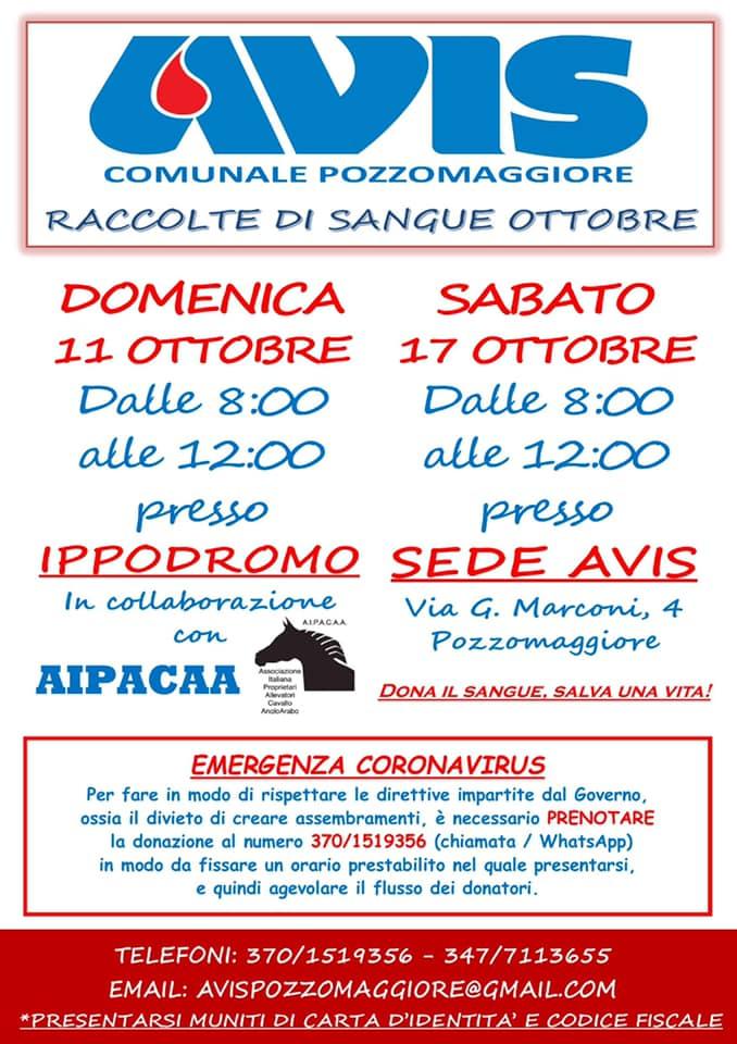 Ippica, Aipacaa: Alla Fiera del cavallo di Pozzomaggiore dell'11/10 raccolta di sanguestraordinaria