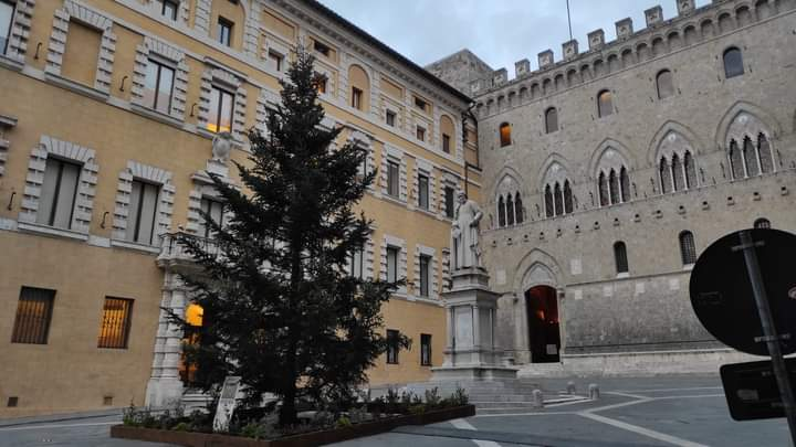 Siena: Oggi 27/11 video fasi installazione albero di Natale in PiazzaSalimbeni