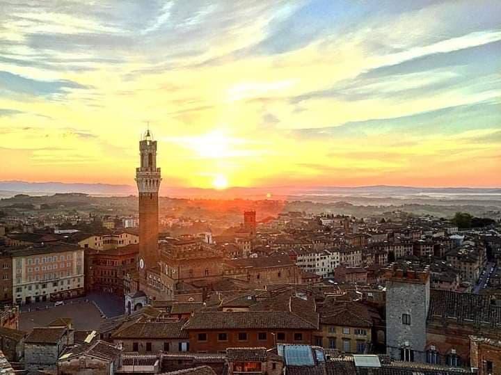 Siena: Francesco Vannoni, La CommediaSenese