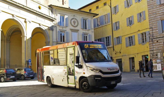 """Siena, Ciacci (Siena Ideale): """"Nuovo incidente pollicino alla Costarella: urgente prendere provvedimenti"""""""