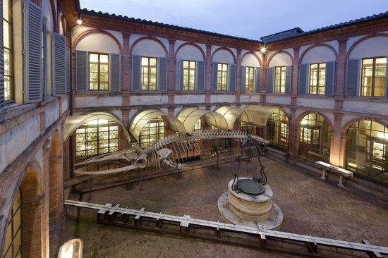 Siena, Fisiocritici: Il Musnaf offre due appuntamenti al mese per visite guidate gratuite suprenotazione