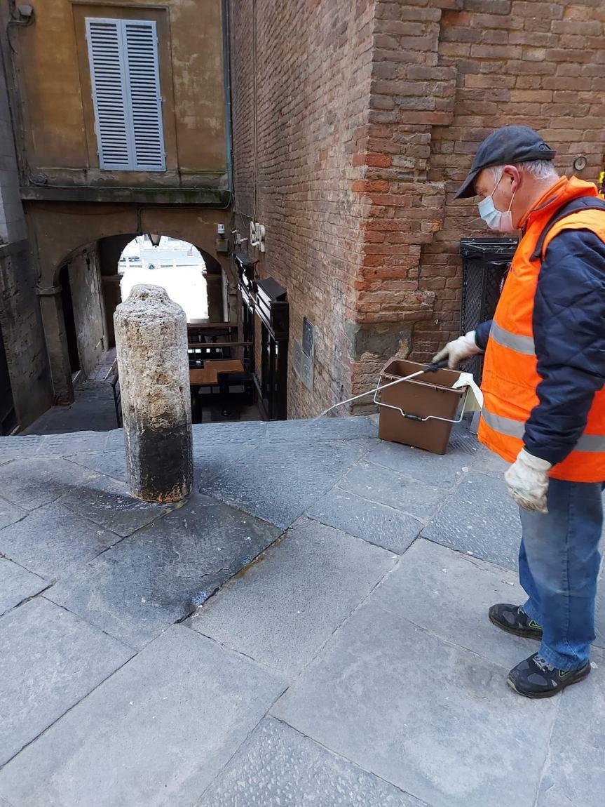 Siena: oggi 22702 Interventi di pulizia delle deiezioni degli animali dacompagnia