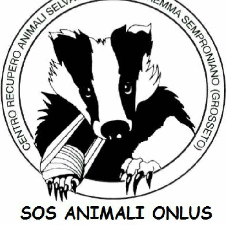 Siena, Sos Animali: Nuovo appello dellaonlus