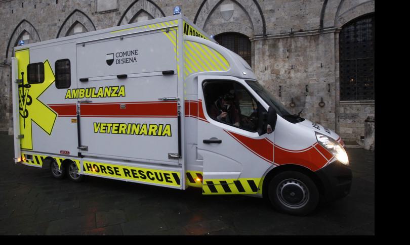 Palio di Siena: Al Palio per i cavalli infortunati arriva l'ambulanza
