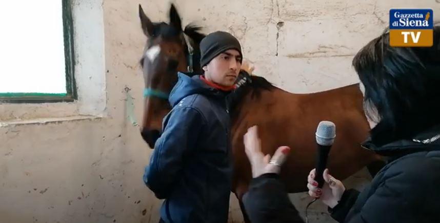Siena, Gazzetta di Siena: Sotto Frusta – Ep. 37 Alessio Giannetti, ritorno alfuturo