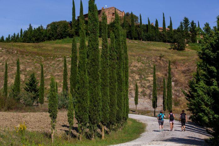 Siena e Provincia: Via Romea, il corso gratuito dedicato alle aziende del territorio organizzato da ConfcommercioSiena