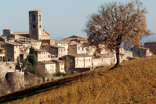Provincia di Siena: Colle di Val d'Elsa, intervento per la sistemazione del tetto del circolo diCampiglia