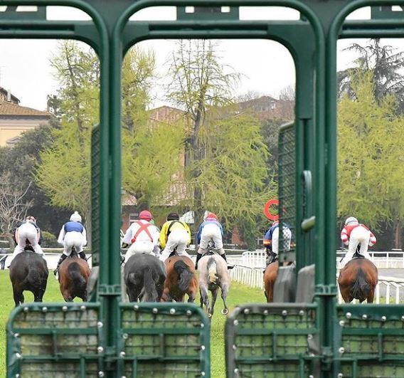 Ippica, Firenze: 29/04 Partenti 2^ e 4^ Corsa per cavalliAnglo-Arabi