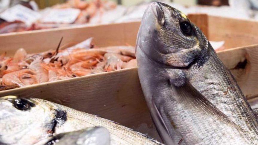 Toscana: Covid, cinque bandi nel pacchetto-pesca dellaRegione