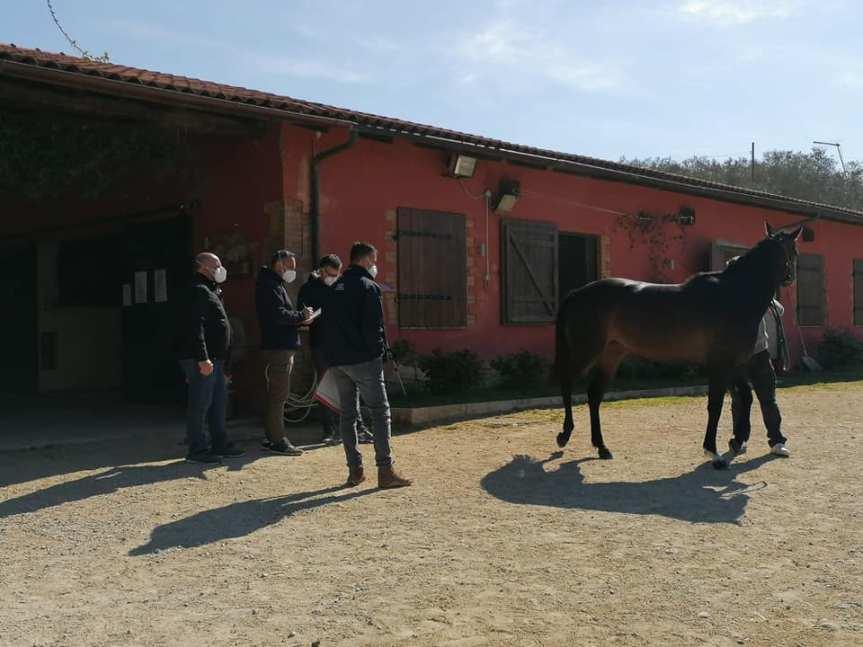 Palio di Siena, Aria di Palio al Ceppo: La tre giorni di visite esperanze