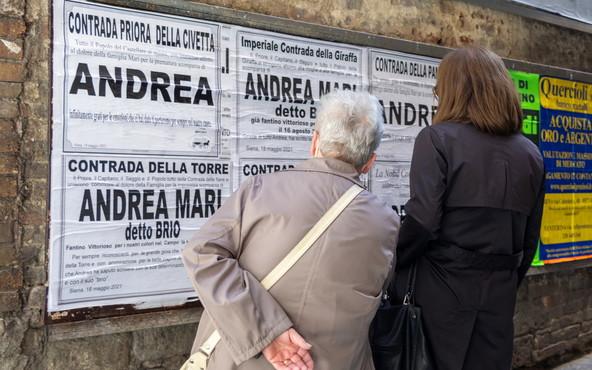 Palio di Siena, morte Brio: Il dolore degli exdirigenti