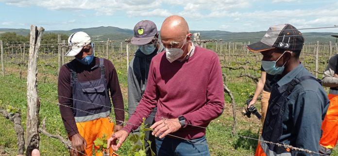 Provincia di Siena, L'inclusione parte dal lavoro: Percorso di formazione tra le vigne del Brunello per 24migranti