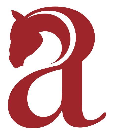 Cavalcata dell'Assunta di Fermo: Pubblicato il bando selezione cavalli, iscrizioni entro il 14luglio