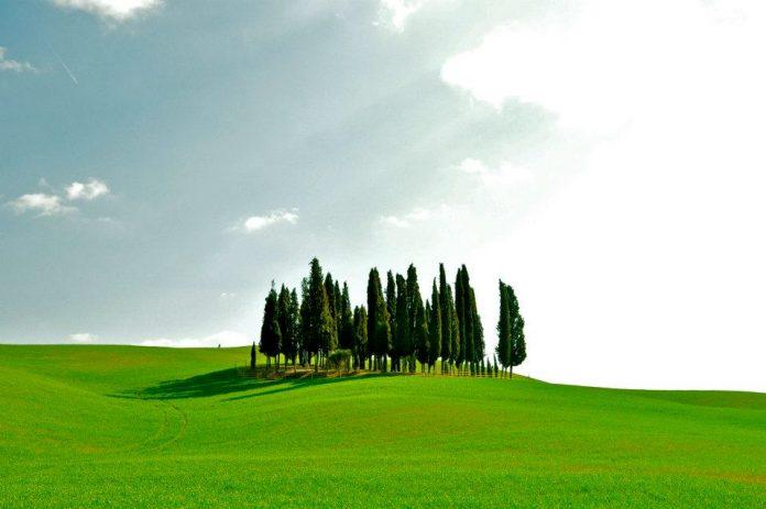 Toscana, Direttore agenzia viaggi, accelerazione per esame regionale: Ministero avvia iter per definizioneprofilo