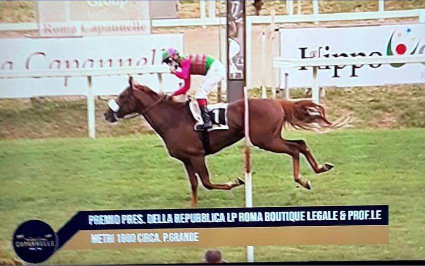 """Ippica, Roma, Derby Italiano:  Oggi 23/05 vince Cristian Demuro su Tokyo Gold, Mulas corre con la scritta""""Brio"""""""