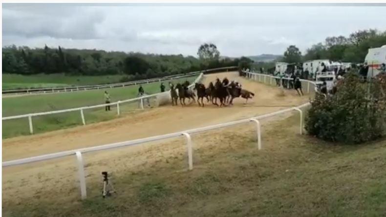 Palio di Siena, Mociano, corse al freddo: Impegno per cavalli efantini