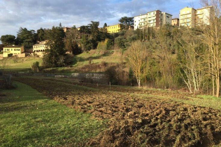 Siena: Legambiente, ecco il bando per gli Orti Urbani del Fosso diRavacciano