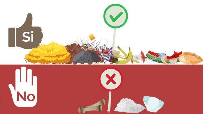 Siena: Raccolta differenziata, il corretto smaltimento del rifiutoorganico