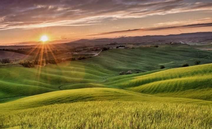 Provincia di Siena: A spasso con Magnum sulle CreteSenesi