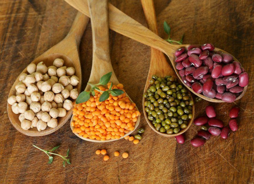 Siena: Le 11 proteine vegetali che non possono mancare in una dietaequilibrata