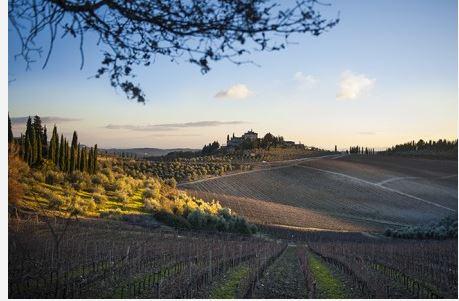 Provincia di Siena: Gaiole in Chianti sostiene la candidatura del Chianti Classico a patrimonioUnesco