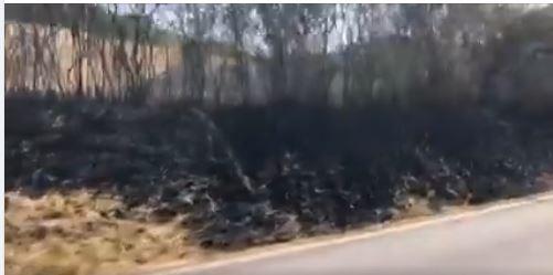 Provincia di Siena: Oggi 29/07 incendio in un campo poco fuoriChiusure