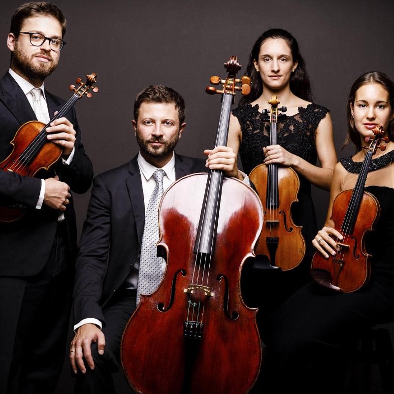 Siena, La violista senese Benedetta Bucci ancora positiva al Covid: Saltano alcuni concerti del QuartettoAdorno