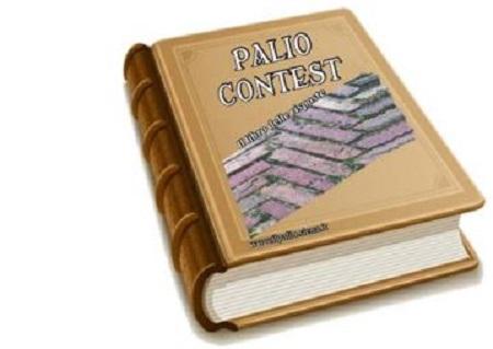 Palio di Siena: E' uscito Palio Contest, il libro dellerisposte