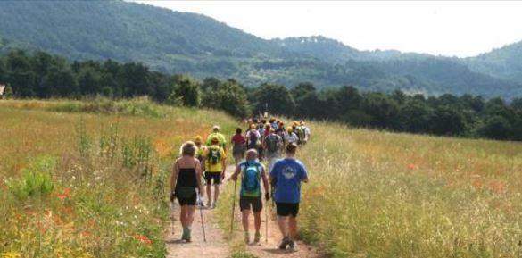 Siena: Walking Francigena Ultramarathon, iscrizioni ancoraaperte